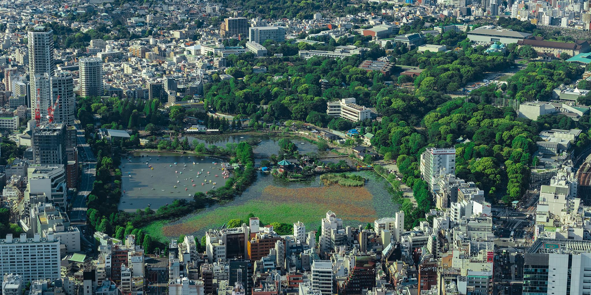 ヘリコプターで東京上空をフライトして見える上野